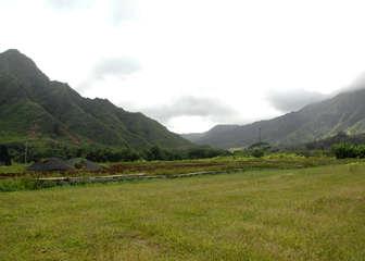 AG LAND HAUULA