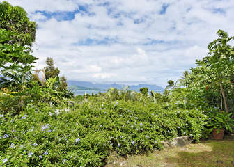 Beautiful Kaneohe Bay View Property!