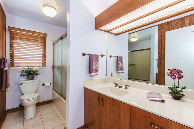 Main Bath Downstairs